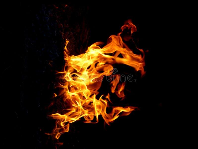 Flamme lumineuse du firecamp photos stock
