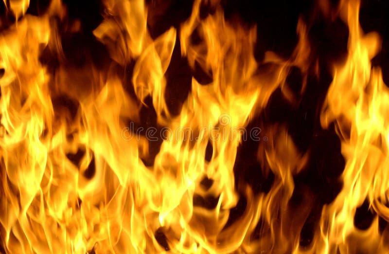 Flammen lizenzfreie stockfotos