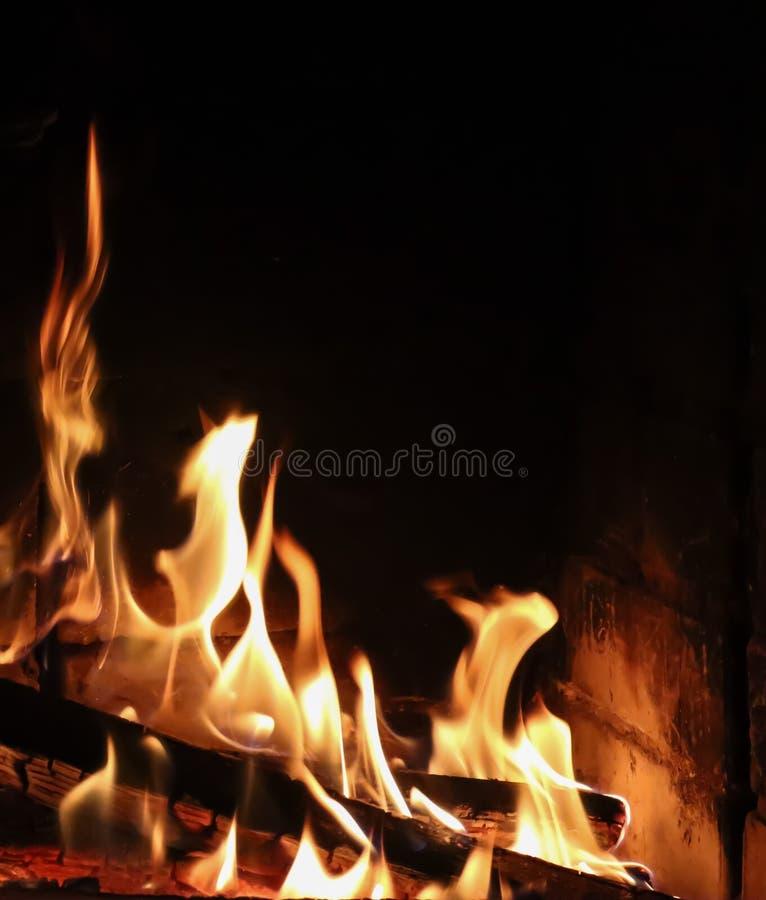 Flammen des Feuers auf einem schwarzen Hintergrund Das Geheimnis des Feuers Raum für Kopie, Text, Ihre Wörter vertikal stockbilder