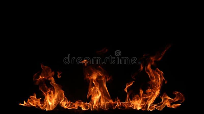 Flammes d'incendie sur le fond noir images libres de droits