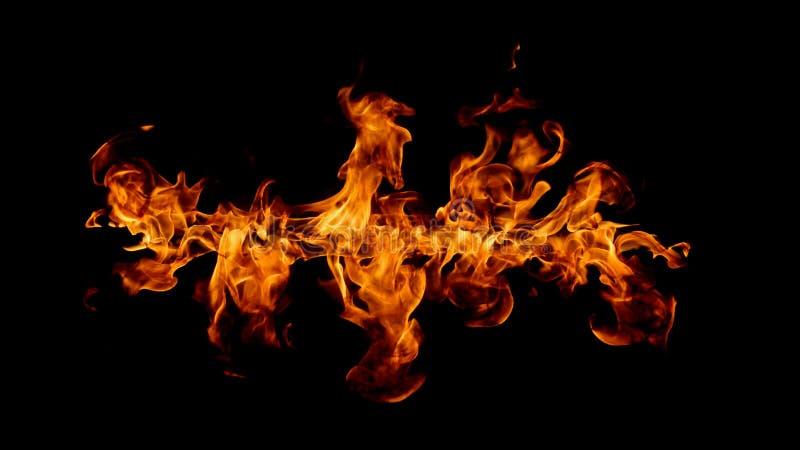 Flammes d'incendie sur le fond noir photo libre de droits