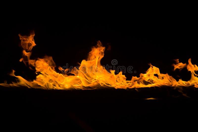 Flammes de flambage sur le fond noir photo libre de droits