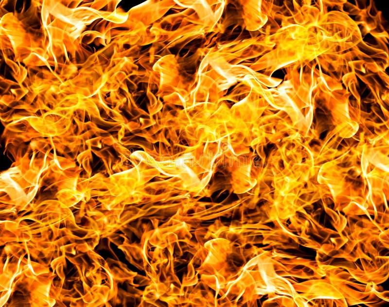 Flammes du feu photo libre de droits