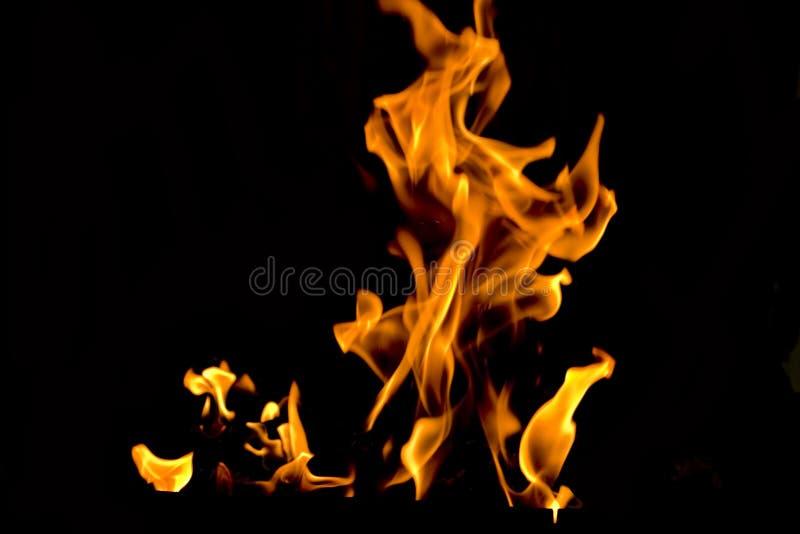 Flammes du feu images stock