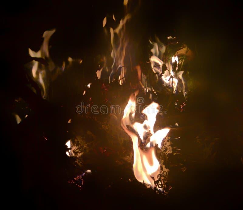 Flammes la nuit image stock