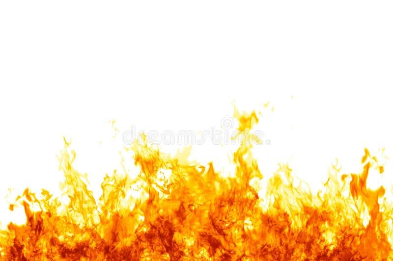 Flammes sur le blanc illustration de vecteur