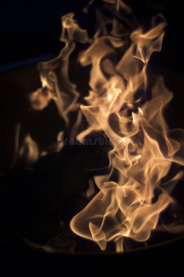 flammor arkivbilder