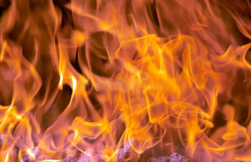 Download Flammor arkivfoto. Bild av flammor, infernos, brännskador - 244104