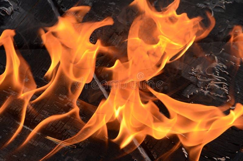 Download Flammor fotografering för bildbyråer. Bild av carbonize - 76701621