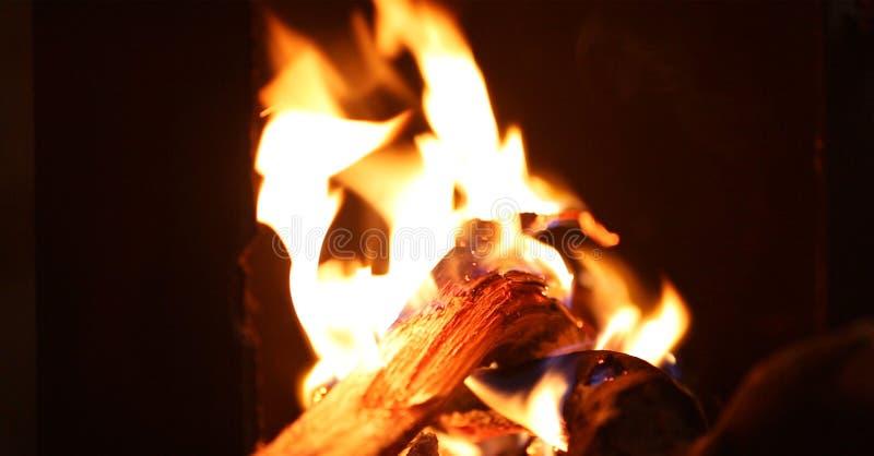 Flammor av en lägereld i natten fotografering för bildbyråer