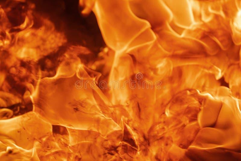 Flammrotes Feuer, natürlicher Hintergrund Schöne, gefährliche Feuerstürme abstrakte Textur lizenzfreie stockfotos
