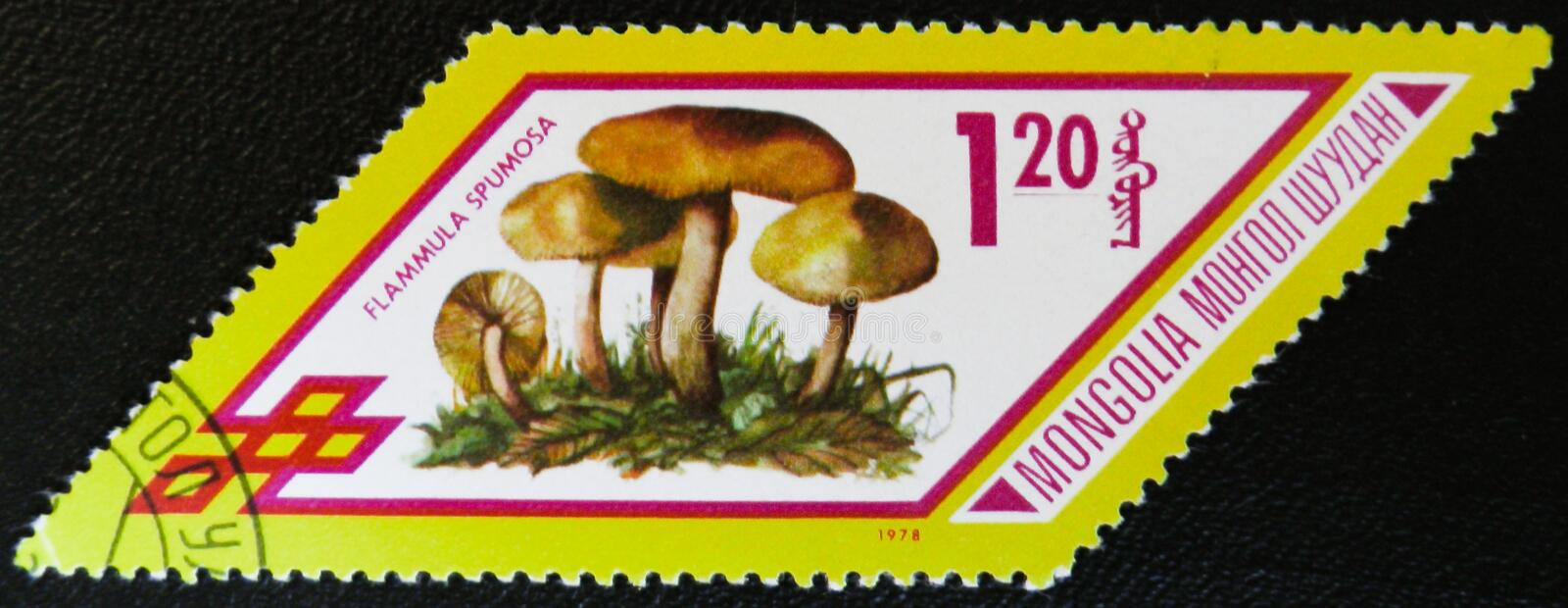 Flammula Spumosa mushrooms, series, circa 1978. MOSCOW, RUSSIA - JANUARY 7, 2017: A stamp printed in Mongolia shows Flammula Spumosa mushrooms, series, circa stock image