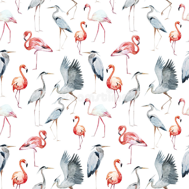 Flamngo and heron pattern vector illustration