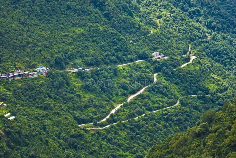 Flanc de coteau et routes couverts de forêts photos libres de droits