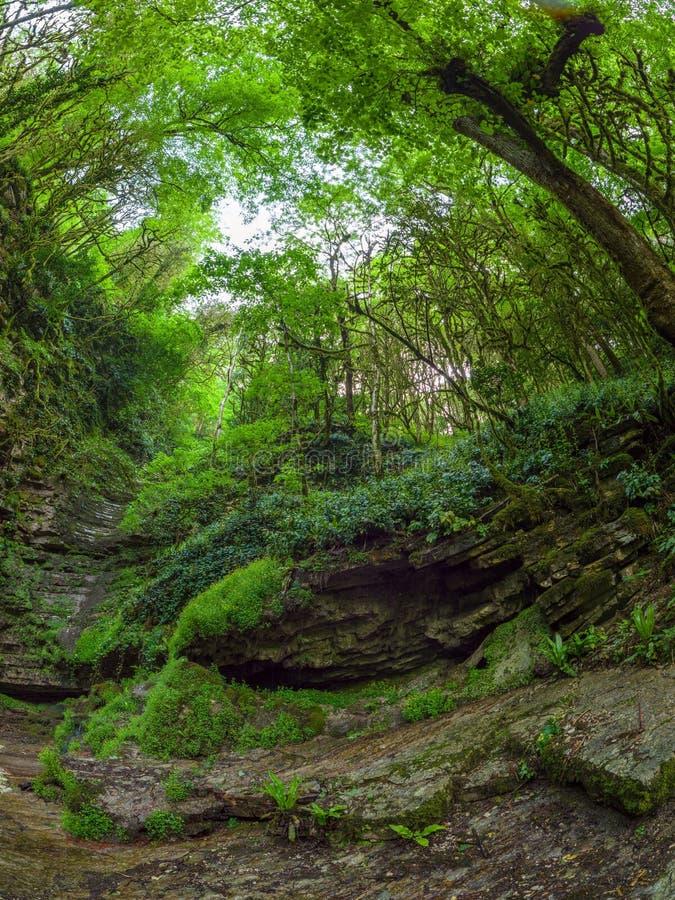 Flanc de montagne rocheux avec des courants coulant le long de lui image libre de droits