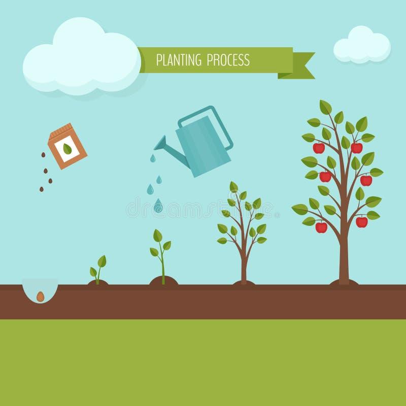 Flancowania drzewa proces infographic Jabłoń przyrosta sceny ste royalty ilustracja