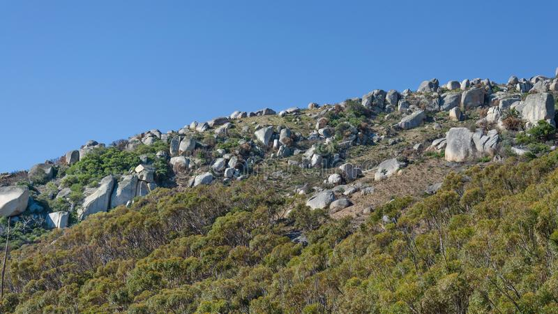 Flanka wzgórze zdjęcia stock