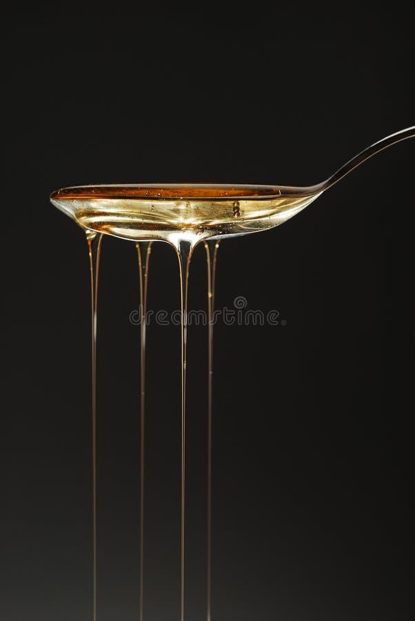 flaque de miel image stock