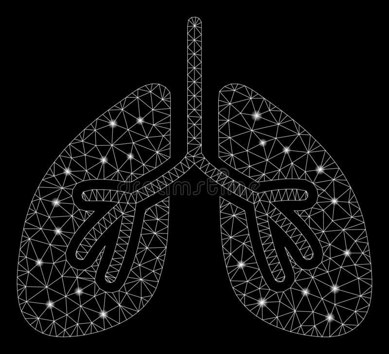 Flare Mesh 2D Lungs with Flare Spots royalty free illustration