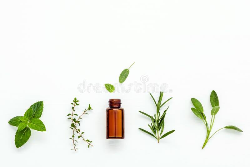 Flasche ätherisches Öl mit frischem Kräutersalbei, Rosmarin, Zitrone lizenzfreies stockfoto