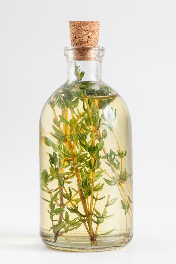 Flasche des Thymianätherischen öls oder -infusion lizenzfreies stockfoto