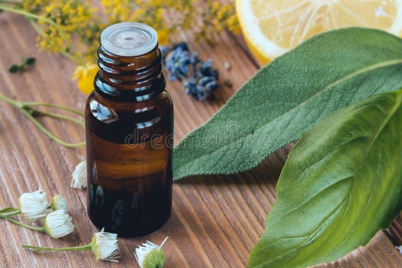 Flasche dunkles Glas mit ätherischem Öl des Basilikums oder Salbei für Gesundheit und Aromatherapie lizenzfreies stockfoto