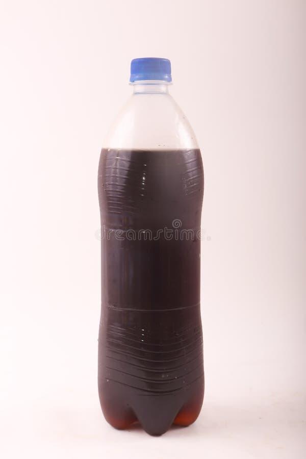 Flasche Kolabaum lizenzfreies stockbild