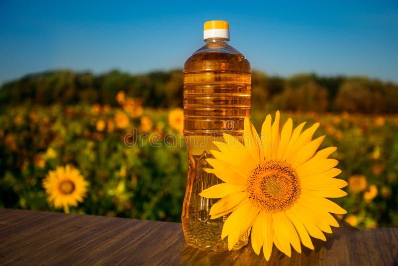 Flasche ?l auf h?lzernem Stand mit Sonnenblumenfeldhintergrund Sonnenblumen?l verbessert Hautgesundheit lizenzfreie stockfotografie
