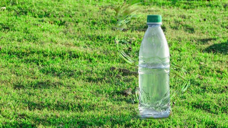 Flasche Mineralwasser mit Spritzeneffekt mitten in einem grünen Gras lizenzfreie stockbilder