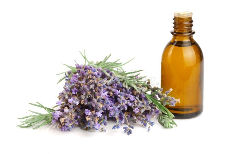 Flasche mit den Aromaöl- und -lavendelblumen lokalisiert auf weißem Hintergrund lizenzfreie stockfotografie