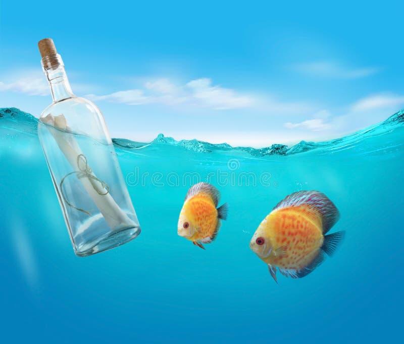Flasche mit einer Mitteilung stockfotos