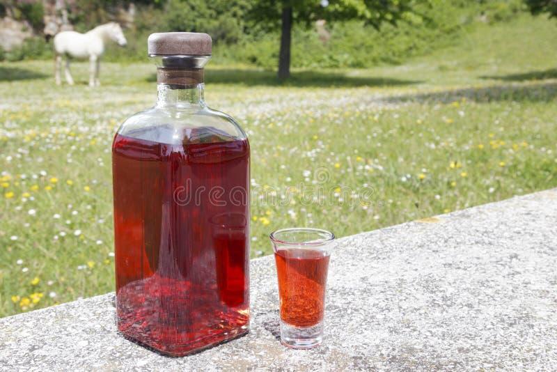 Flasche Patxaran und Schnapsglas stockfoto