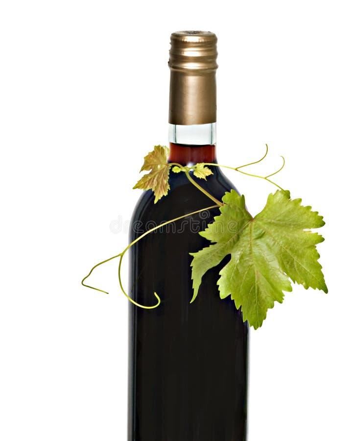 Flasche Rotwein stockbild