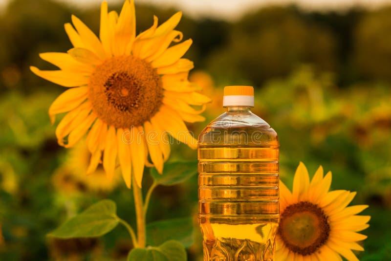 Flasche Sonnenblumenöl Sonnenblumenöl verbessert Hautgesundheit lizenzfreie stockfotografie