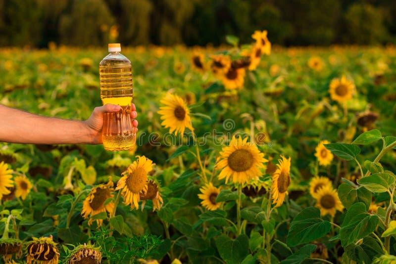 Flasche Sonnenblumenöl Sonnenblumenöl verbessert Hautgesundheit und fördert Zellregeneration lizenzfreies stockfoto