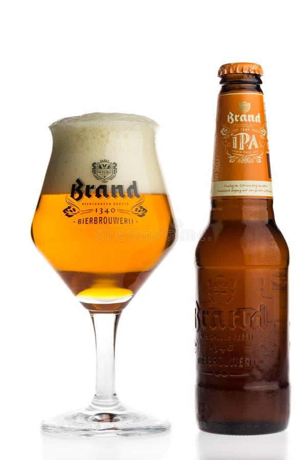 Flasche und Glas niederländisches Bier der Marke IPA stockbilder