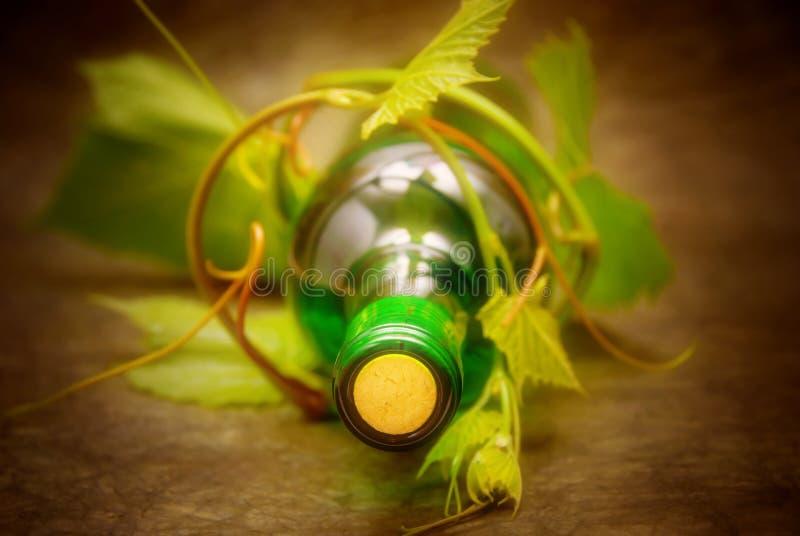 Flasche Wein lizenzfreie stockfotografie
