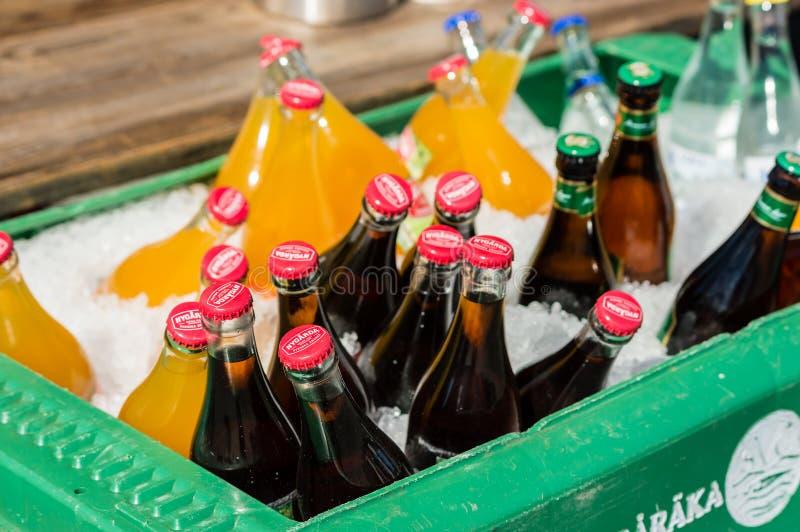 Flaschen auf Eis stockbild