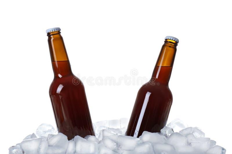 Flaschen Bier auf Eiswürfeln lizenzfreies stockfoto