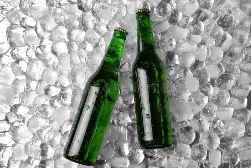 Flaschen Bier auf Eiswürfeln stockfoto