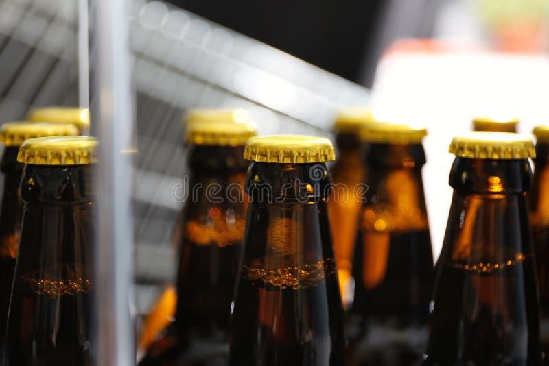 Flaschen Bier in der Brauerei lizenzfreie stockbilder