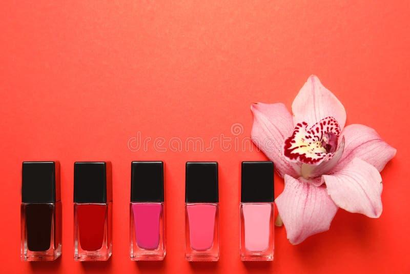 Flaschen des Nagellacks und der Blume auf Farbhintergrund stockfotografie