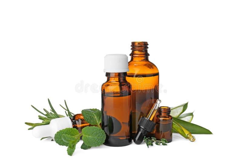 Flaschen mit ätherischen Ölen und frischen Kräutern lizenzfreies stockbild