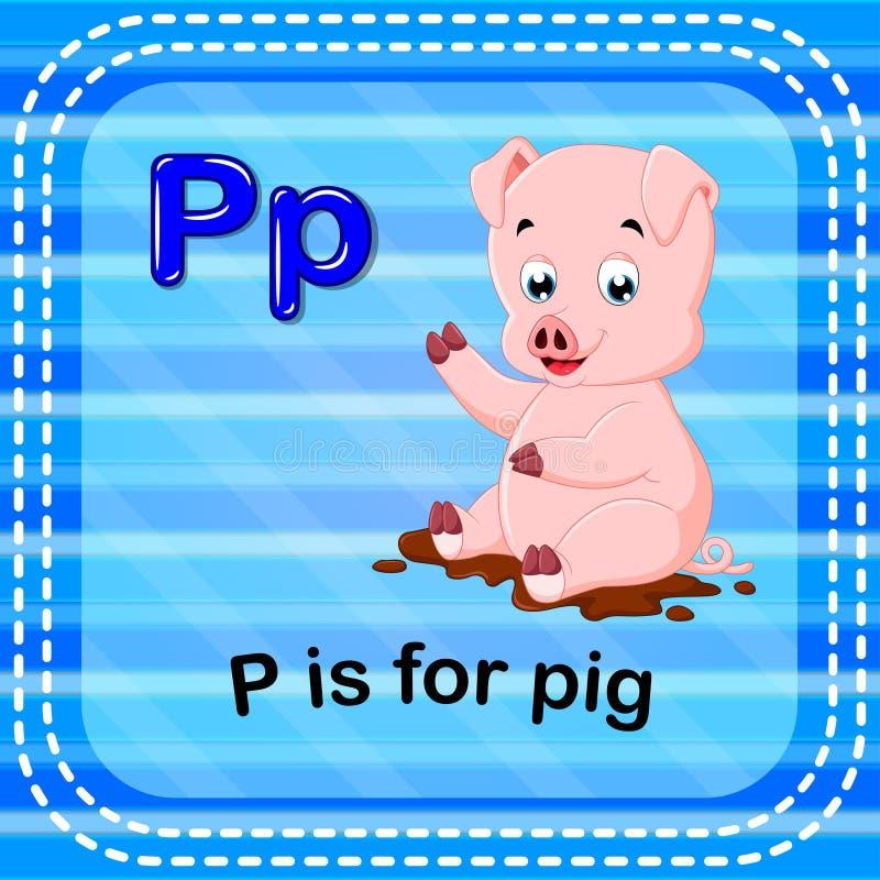 Flashcard bokstav P är för svin vektor illustrationer