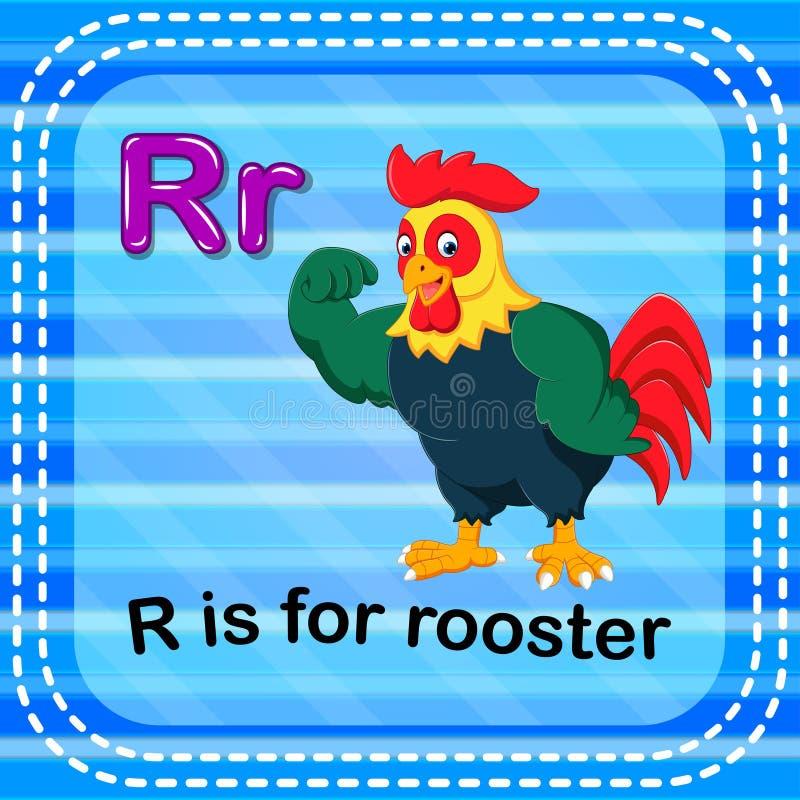 Flashcard bokstav R är för tupp vektor illustrationer