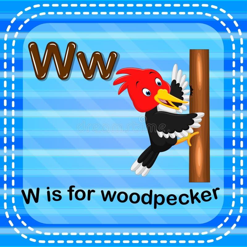 Flashcard bokstav W är för hackspett vektor illustrationer