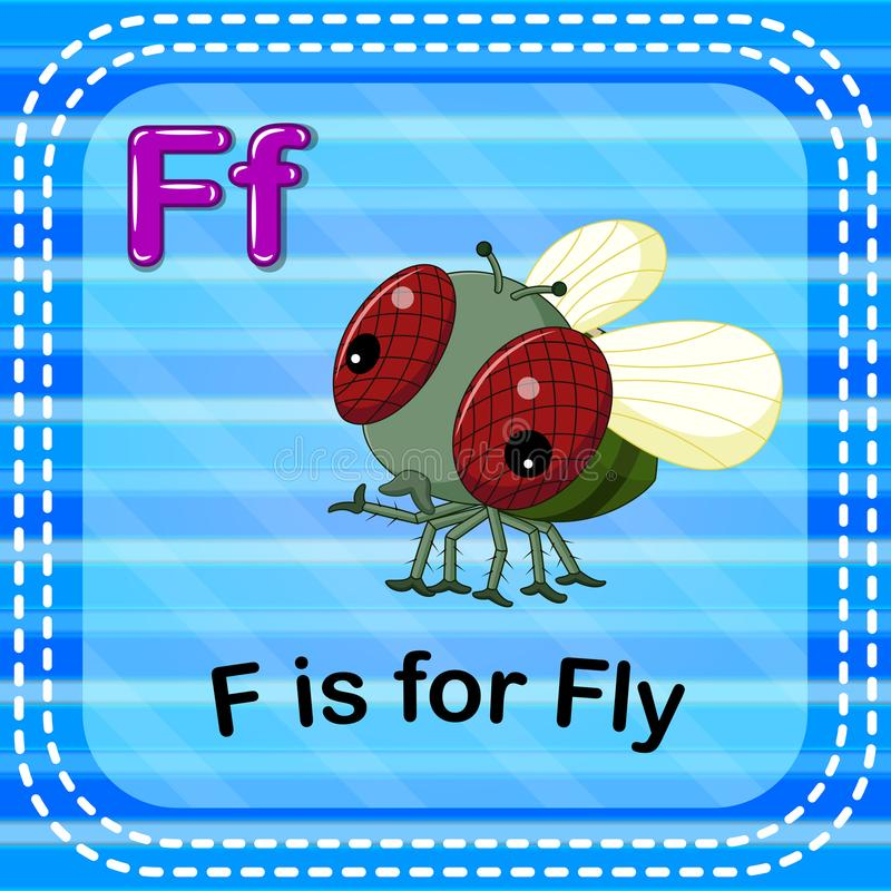 Flashcard-Buchstabe F ist für Fliege stock abbildung