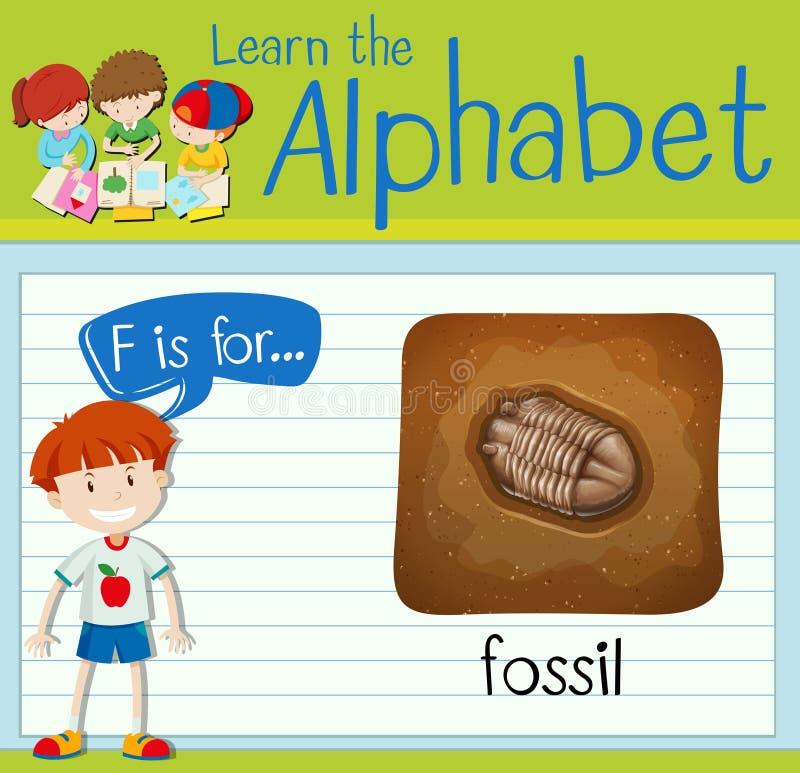 Flashcard-Buchstabe F ist für Fossil lizenzfreie abbildung
