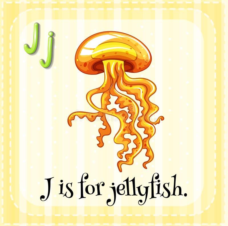 Flashcard-Buchstabe J ist für Quallen lizenzfreie abbildung