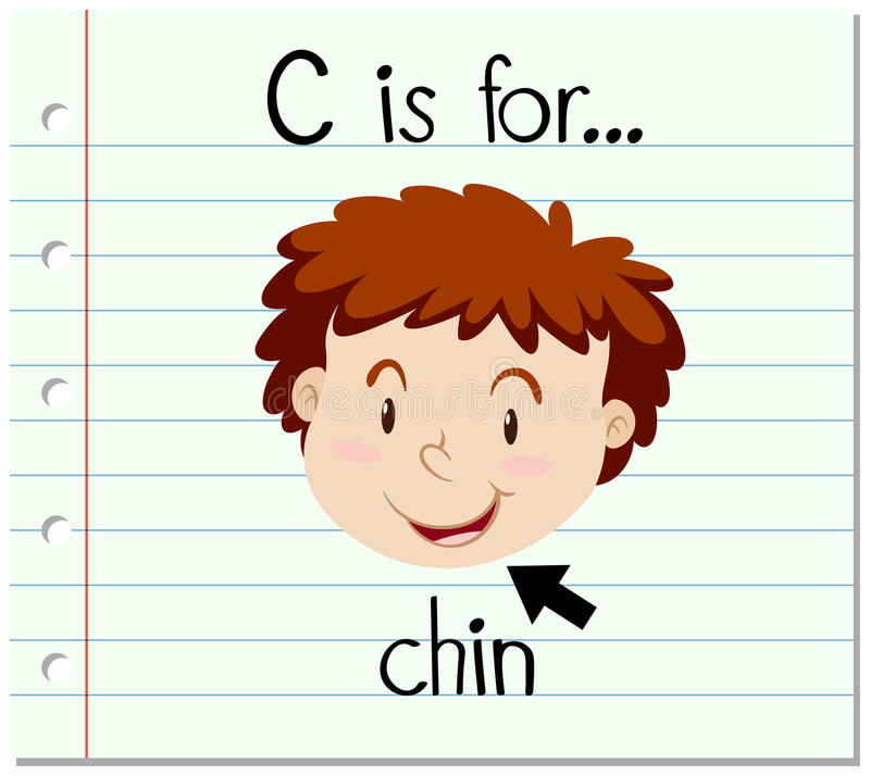 Flashcard letter C is for chin. Illustration vector illustration